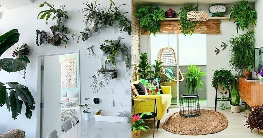 20 Inspirasi penataan tanaman hijau di ruangan, beri kesan asri