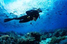 7 Spot diving mendunia di Tanah Air, naik AirAsia lebih hemat