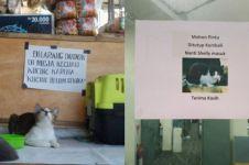 7 Peringatan lucu hadapi kucing ini absurd abis, bikin ngakak