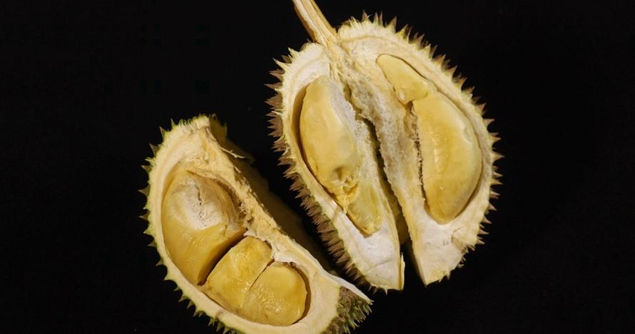 Penelitian ini buktikan kulit buah durian bisa cegah bau napas