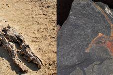 Penemuan mengejutkan 10 fosil di Gurun Sahara, ada buaya raksasa
