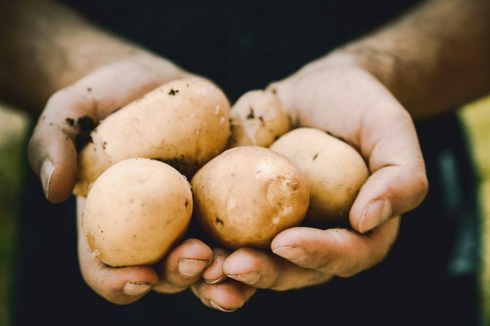 Pemutih kulit tangan © 2019 brilio.net