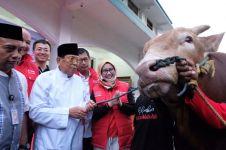 Jelang Idul Adha 1440 Hijriah, Telkomsel salurkan 751 hewan kurban