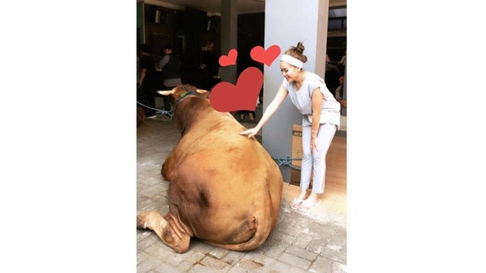 seleb lebih dari empat sapi instagram