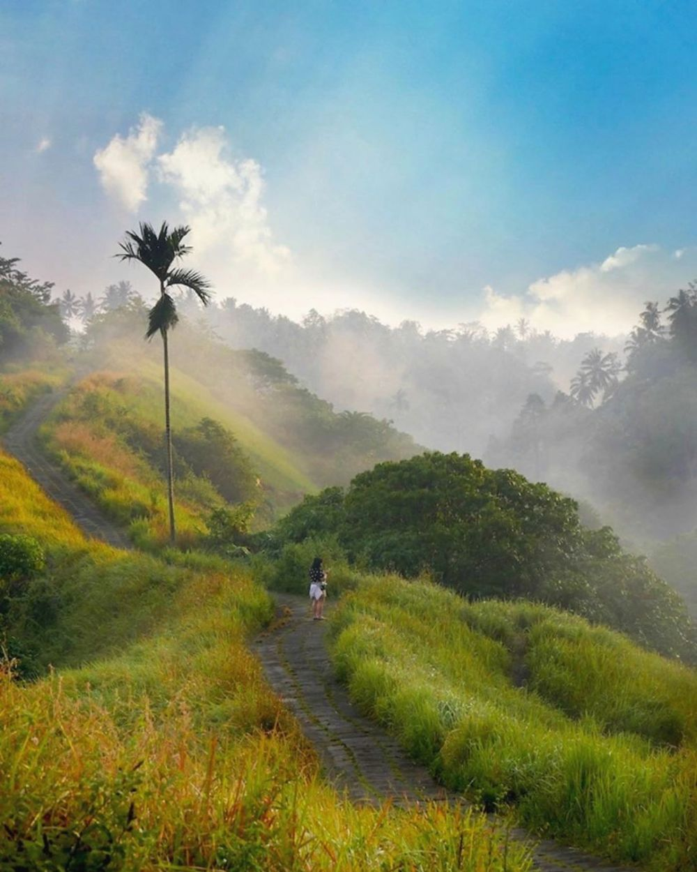 Tempat wisata gratis di Bali © 2019 brilio.net