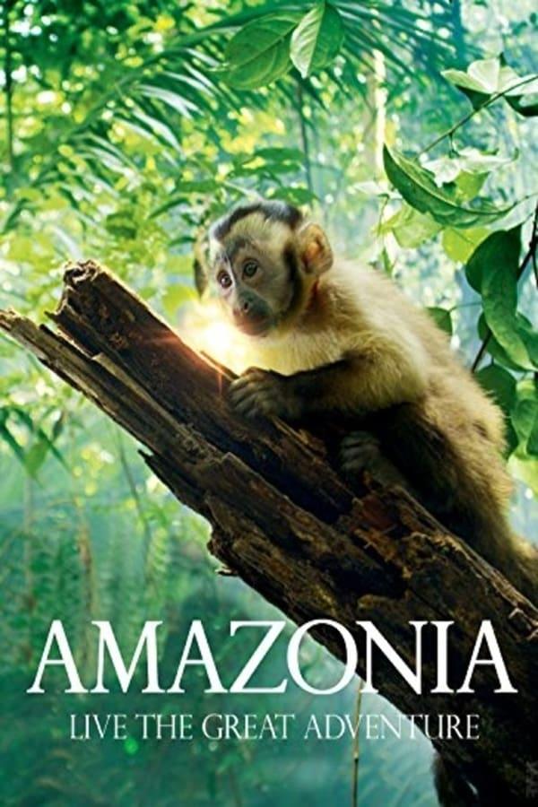 4 Film ini suguhkan keasrian dan kearifan lokal hutan Amazon berbagai sumber