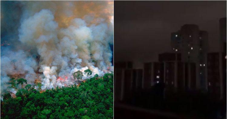 4 Dampak kebakaran Hutan Amazon, polusi udara mengganggu kesehatan