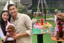 8 Momen perayaan ulang tahun anjing Caesar Hito & Felicya, meriah