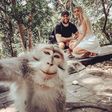 cara selfie dengan monyet © 2019 twitter