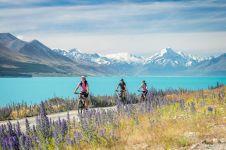3 Alasan musim semi jadi waktu terbaik liburan ke New Zealand