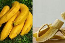 Jangan dibuang, ini 7 manfaat kulit pisang untuk kesehatan