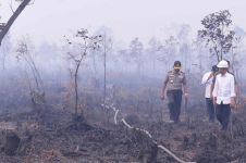 Kebakaran hutan kembali terjadi, Jokowi tegur Pemda Riau
