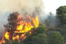 Begini foto kebakaran hutan Kalimantan dari luar angkasa, miris