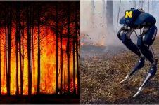 8 Teknologi canggih lawan kebakaran hutan, ada robot antiapi
