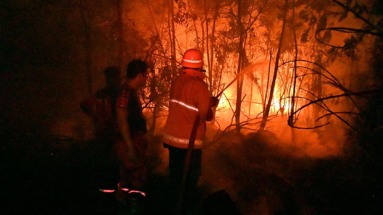 Bareskrim tetapkan 325 orang & 95 korporasi tersangka kebakaran hutan