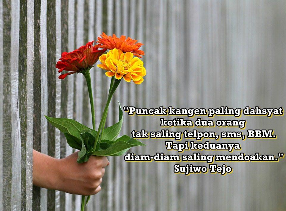 30 Kata-kata cinta dalam diam menyentuh hati pixabay