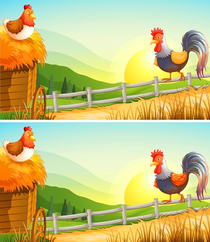 perbedaan pada 13 gambar ini brightside.me
