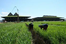 Rute Banyuwangi-Yogyakarta PP mulai 19 November, ini jadwalnya