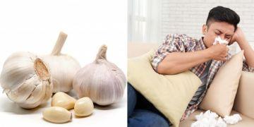 9 Manfaat bawang putih rebus untuk kesehatan