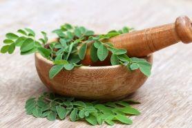 12 Manfaat daun kelor untuk ibu hamil & cara menggunakannya