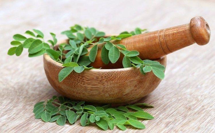 8 Manfaat daun kelor untuk diabetes & cara menggunakannya