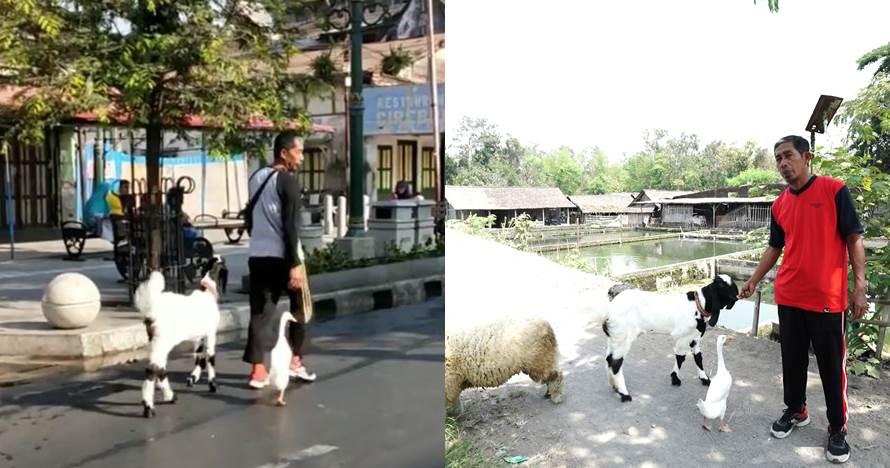 Gandung, sosok yang bikin heboh ajak bebek-kambing jalan santai