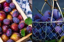 4 Manfaat buah plum untuk pria, bisa tingkatkan kesuburan