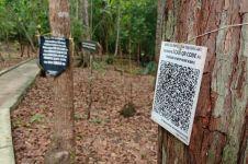 Di desa wisata ini, pengunjung bisa mengenalpohon dengan Kepo