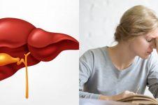 8 Fungsi hati manusia dan cara merawatnya, kamu wajib tahu