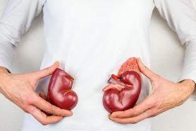8 Fungsi ginjal yang penting bagi tubuh dan cara menjaganya
