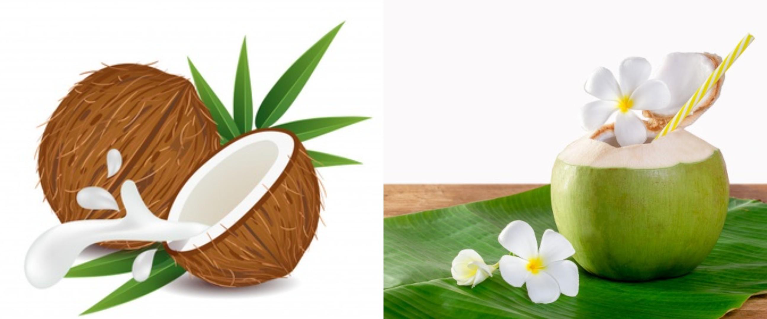 30 Manfaat air kelapa untuk kesehatan & kecantikan, hilangkan jerawat