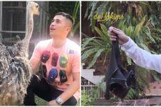 10 Potret koleksi hewan Irfan Hakim, ternyata pecinta satwa