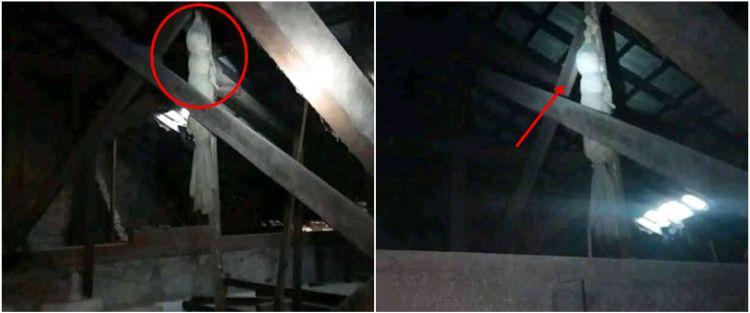 Mau pasang AC, pria ini temukan penampakan serem di plafon rumah