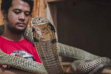 7 Potret rumah Panji Petualang, koleksi hewan bikin melongo