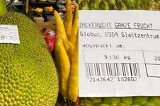 Nangka ini dijual Rp 2,5 juta per buah, bikin heboh