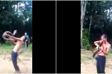 Detik-detik pawang ular digigit kobra saat beraksi, berakhir tragis