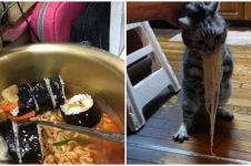 9 Aksi kucing curi makanan ini lucunya bikin ngakak kesal