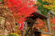 Destinasi wisata terbaik musim gugur di Jepang