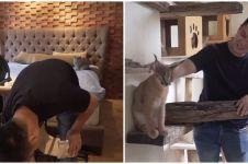 8 Potret kamar hewan peliharaan Baim Wong, mewah banget