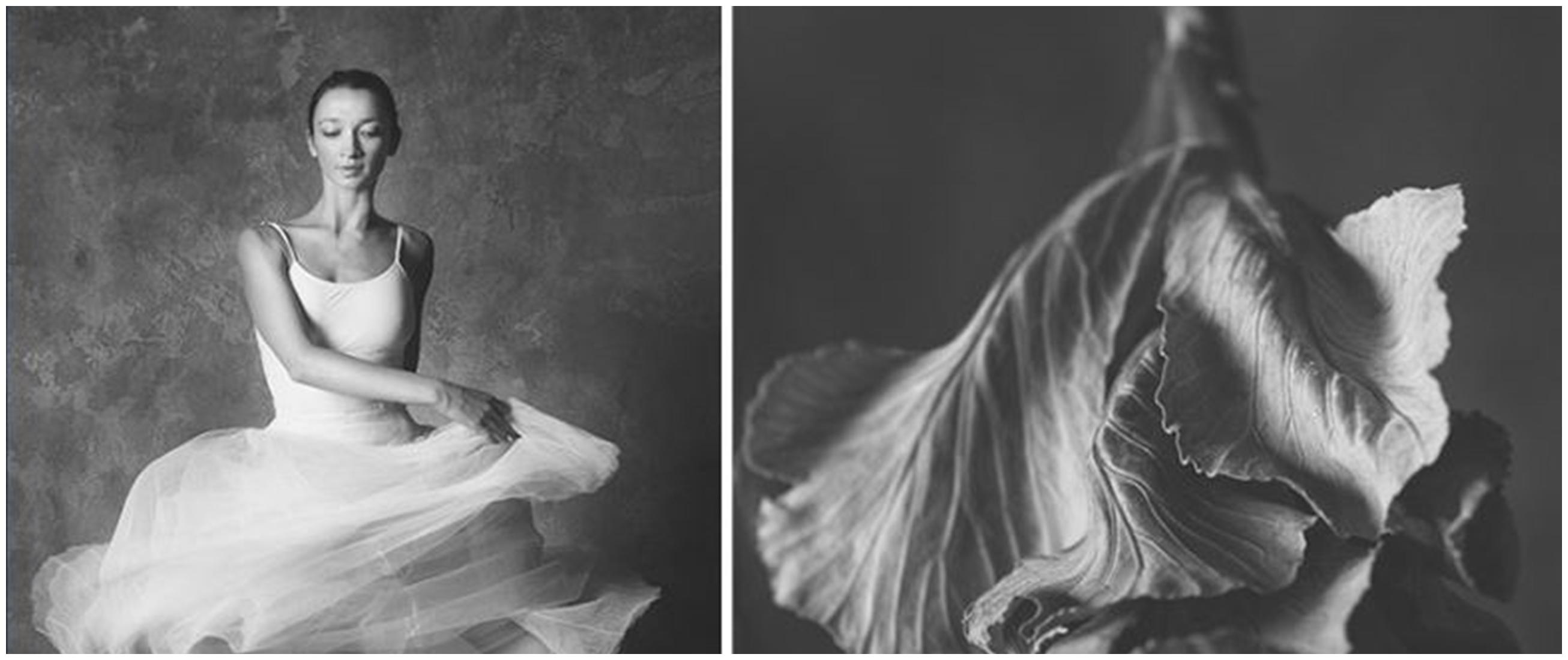 10 Cocoklogi penari balet dengan bunga ini bikin takjub