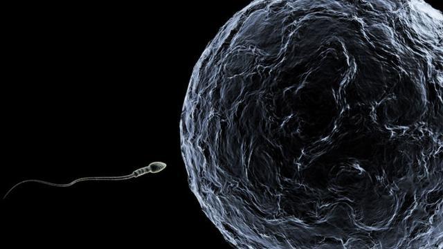 soal perempuan bisa hamil saat berenang © 2020 berbagai sumber