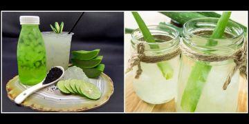 7 Resep minuman dari lidah buaya, segar dan bikin nagih