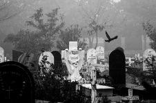 Black Death, wabah mematikan dalam sejarah dunia selain Corona