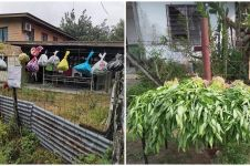 7 Potret desa di Malaysia bagikan hasil panen gratis saat corona