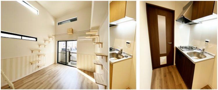 7 Potret apartemen unik khusus pencinta kucing, simple & nyaman