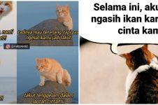 10 Meme kucing sedang jatuh cinta, romantis banget