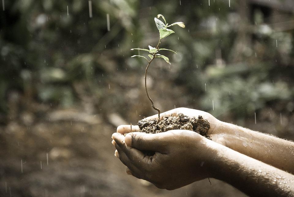 Doa ketika turun hujan berbagai sumber