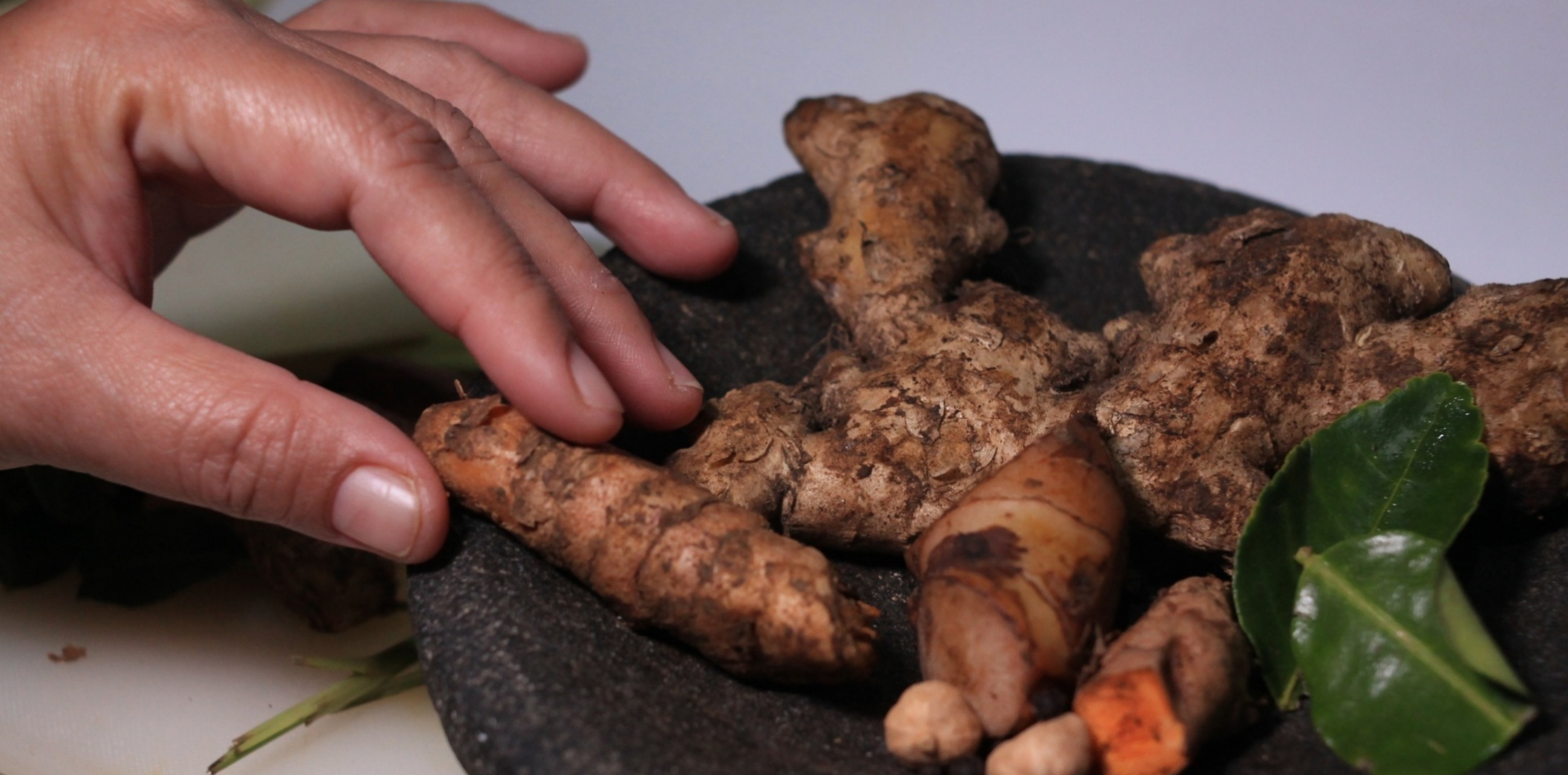 8 Fakta jus elektrik herbal dari ekstrak rempah asli Indonesia