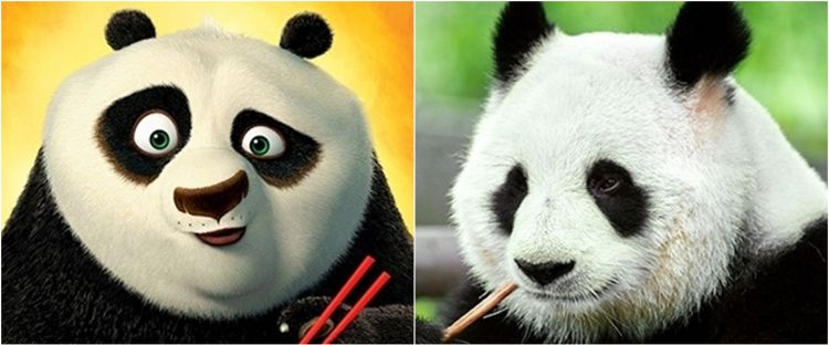 Potret ekspresi kocak 10 hewan sekilas mirip tokoh kartun