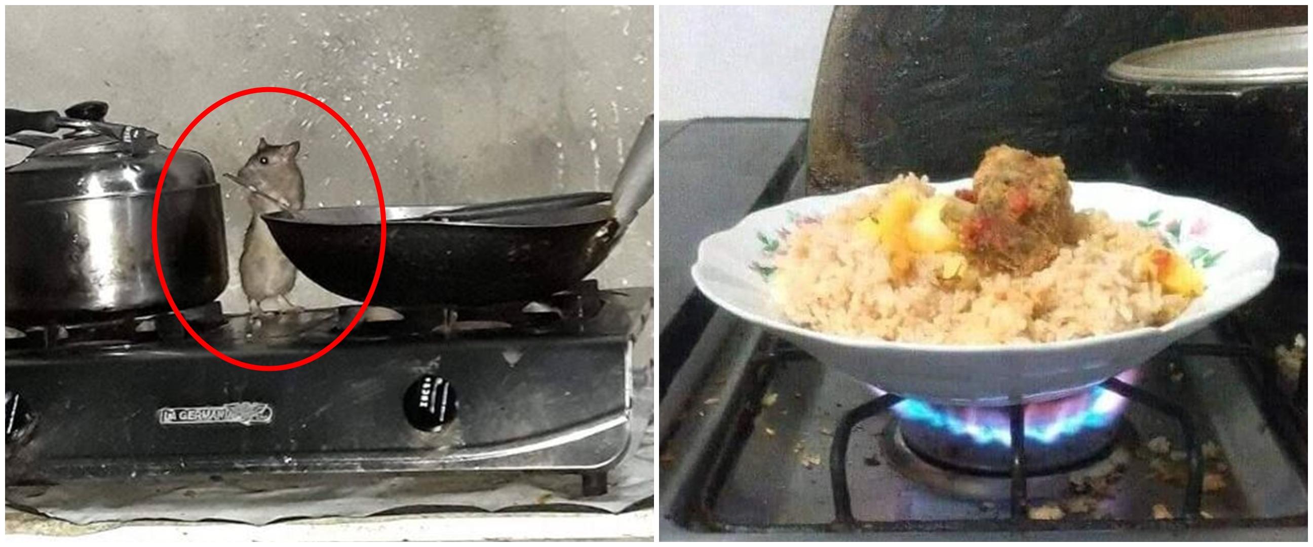 10 Potret absurd kegiatan memasak di dapur ini lucunya ngeselin